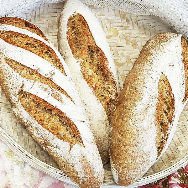 Curso de pan